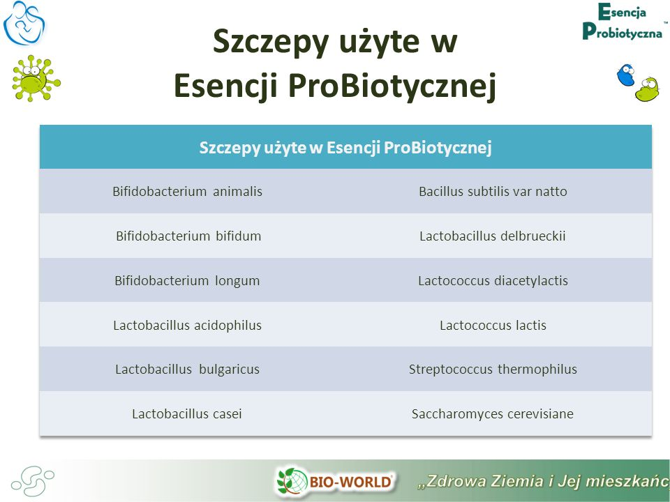 Szczepy użyte w Esencji ProBiotycznej