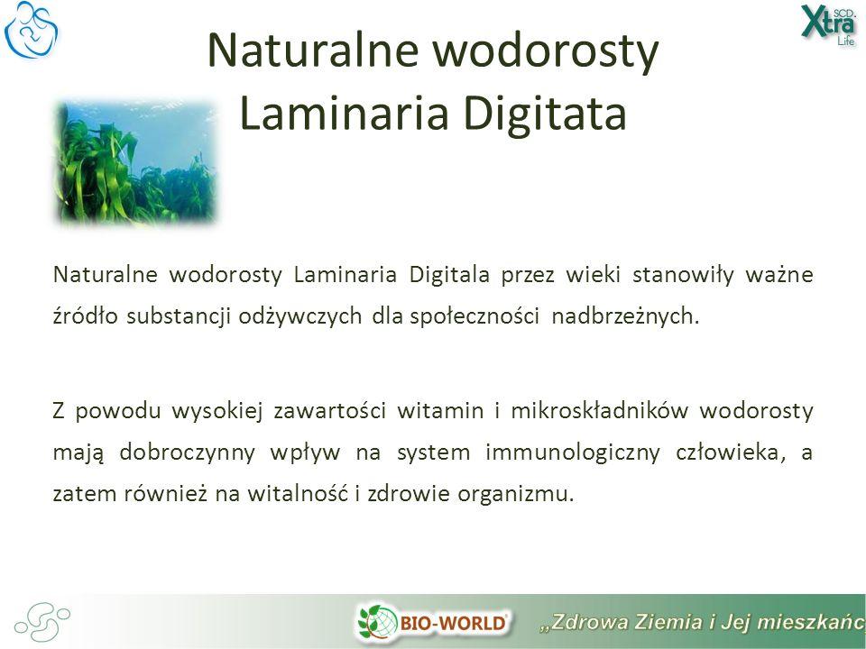 Naturalne wodorosty Laminaria Digitala przez wieki stanowiły ważne źródło substancji odżywczych dla społeczności nadbrzeżnych.