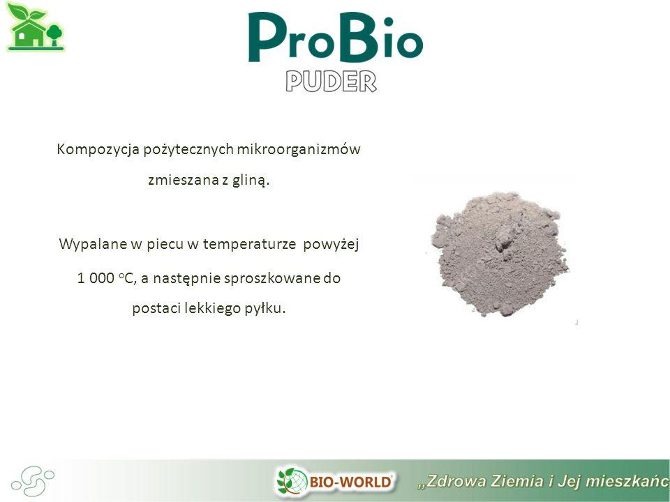 Kompozycja pożytecznych mikroorganizmów zmieszana z gliną.