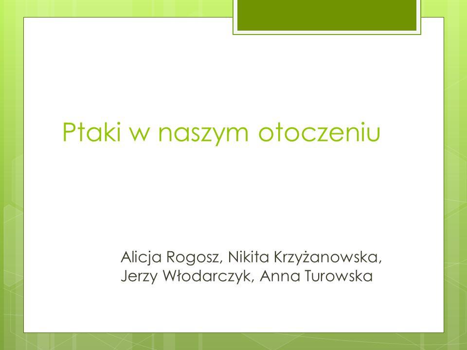 Ptaki w naszym otoczeniu Alicja Rogosz, Nikita Krzyżanowska, Jerzy Włodarczyk, Anna Turowska