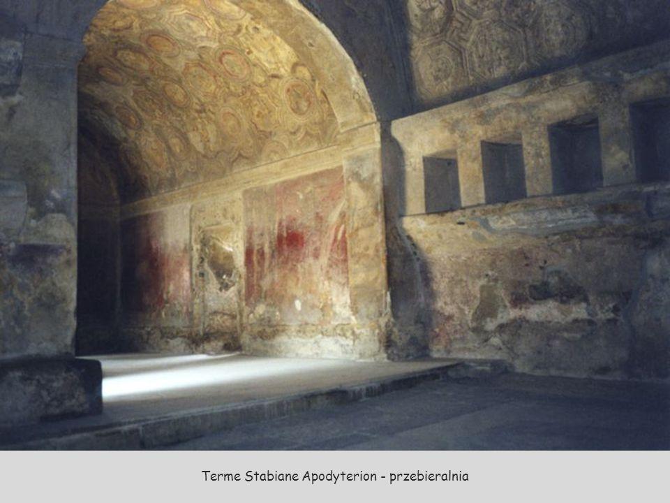 Termy – na terenie wykopalisk odkryto trzy kompleksy term miejskich.
