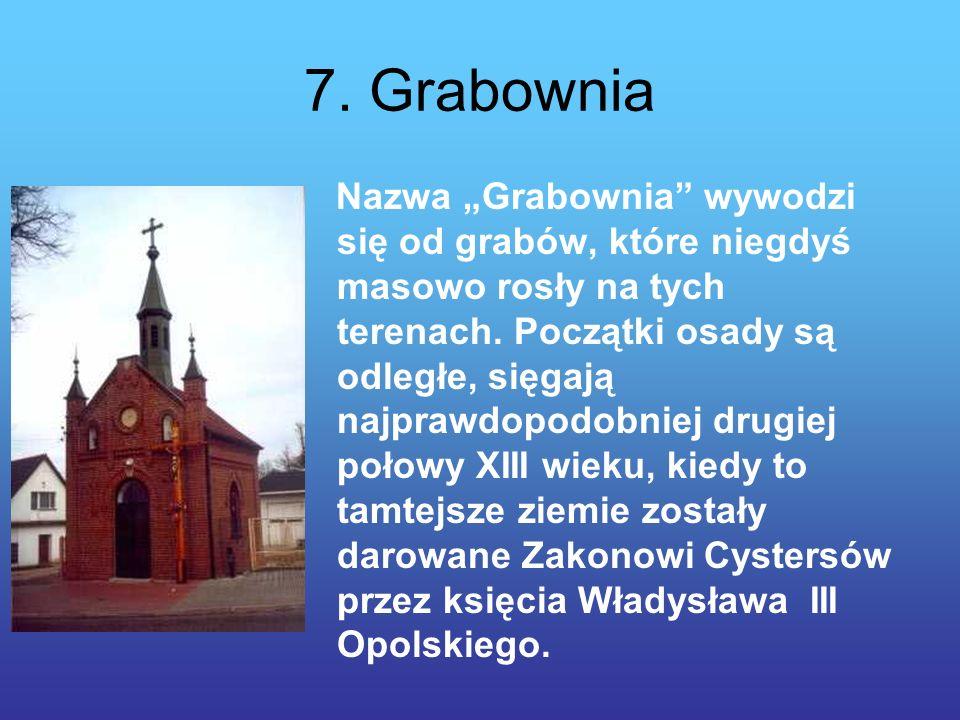 7.Grabownia Nazwa Grabownia wywodzi się od grabów, które niegdyś masowo rosły na tych terenach.