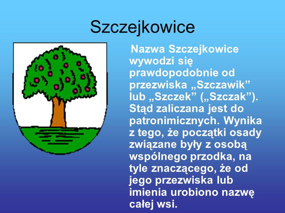Szczejkowice Nazwa Szczejkowice wywodzi się prawdopodobnie od przezwiska Szczawik lub Szczek (Szczak).