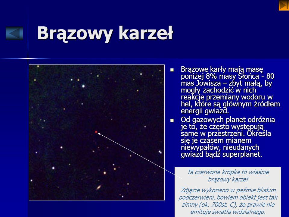 Brązowy karzeł Brązowe karły mają masę poniżej 8% masy Słońca - 80 mas Jowisza – zbyt małą, by mogły zachodzić w nich reakcje przemiany wodoru w hel,