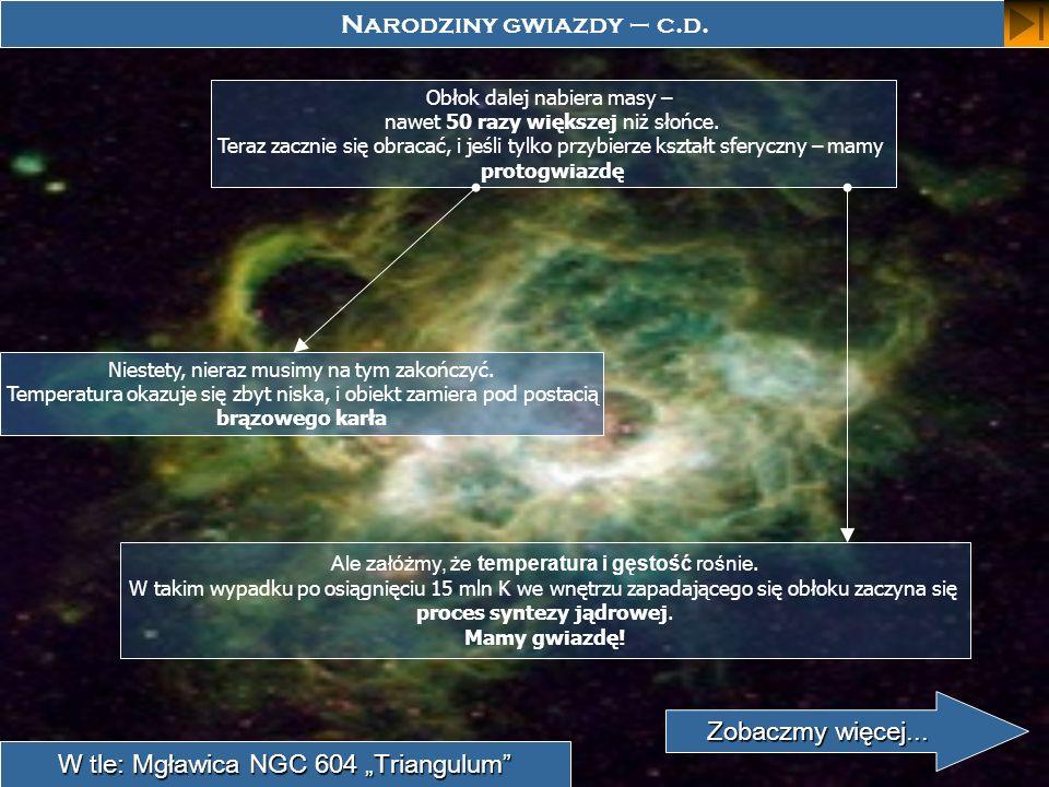 W tle: Mgławica NGC 604 Triangulum Narodziny gwiazdy – c.d. Obłok dalej nabiera masy – nawet 50 razy większej niż słońce. Teraz zacznie się obracać, i