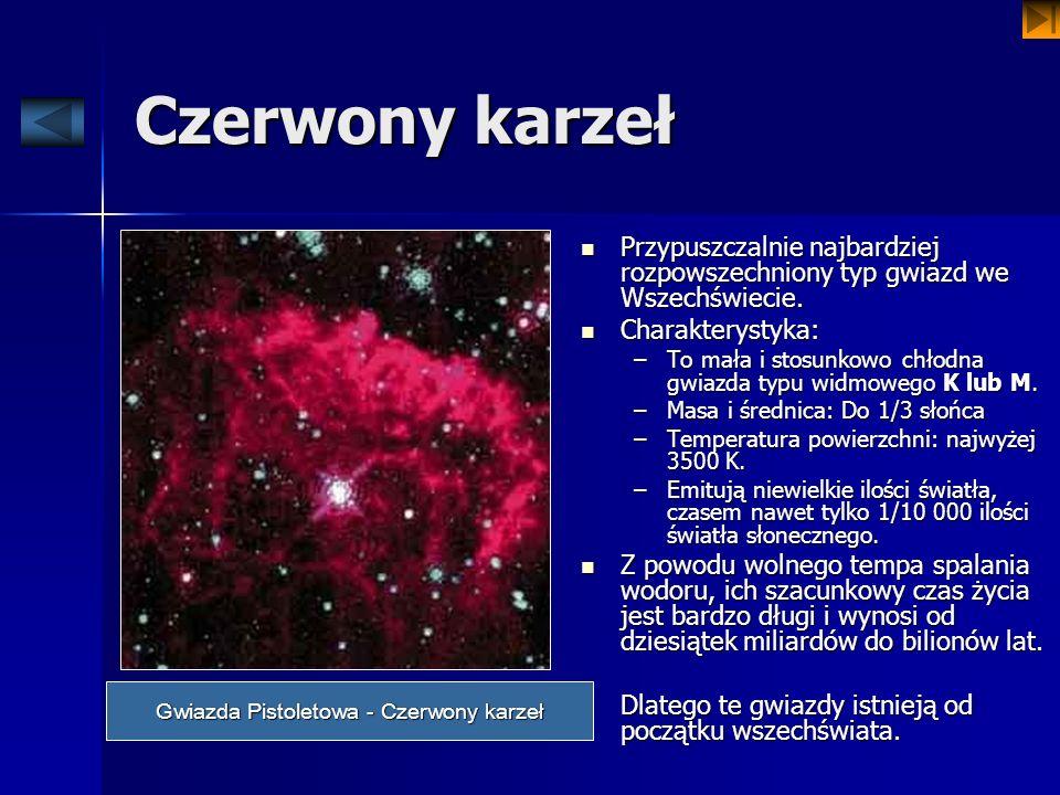 Czerwony karzeł Przypuszczalnie najbardziej rozpowszechniony typ gwiazd we Wszechświecie. Przypuszczalnie najbardziej rozpowszechniony typ gwiazd we W