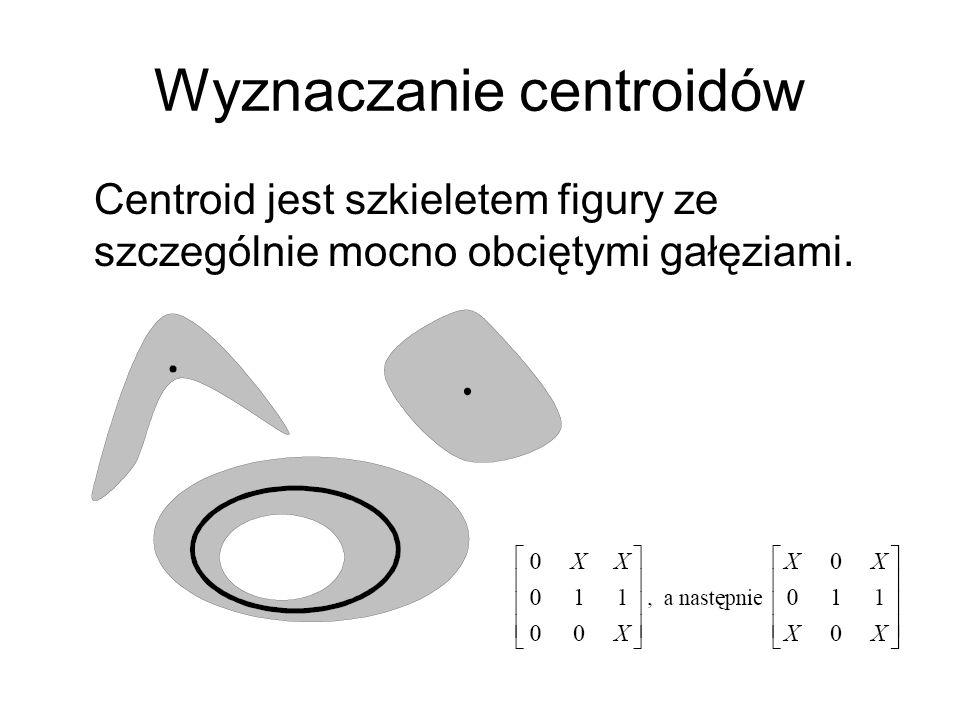 Wyznaczanie centroidów Centroid jest szkieletem figury ze szczególnie mocno obciętymi gałęziami.