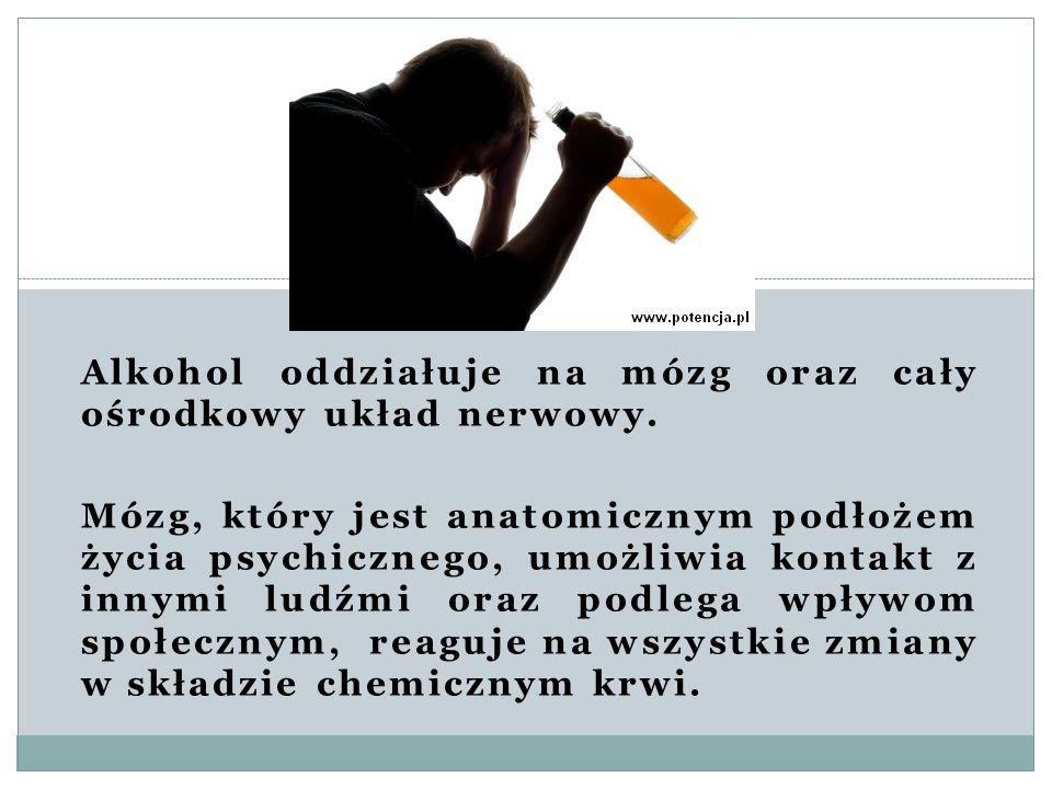 Alkohol oddziałuje na mózg oraz cały ośrodkowy układ nerwowy. Mózg, który jest anatomicznym podłożem życia psychicznego, umożliwia kontakt z innymi lu