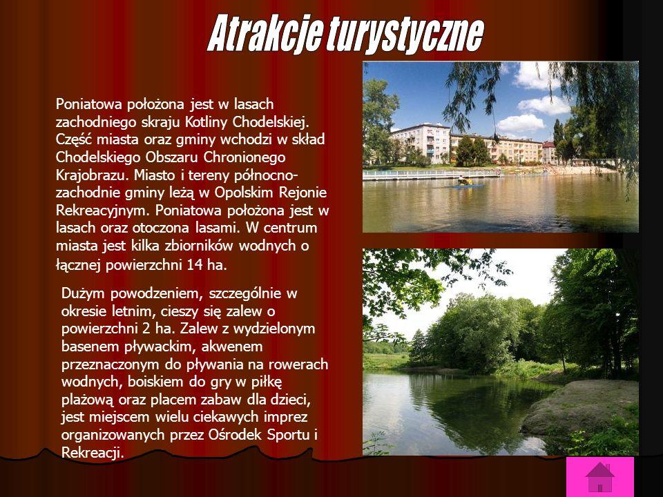Poniatowa położona jest w lasach zachodniego skraju Kotliny Chodelskiej.