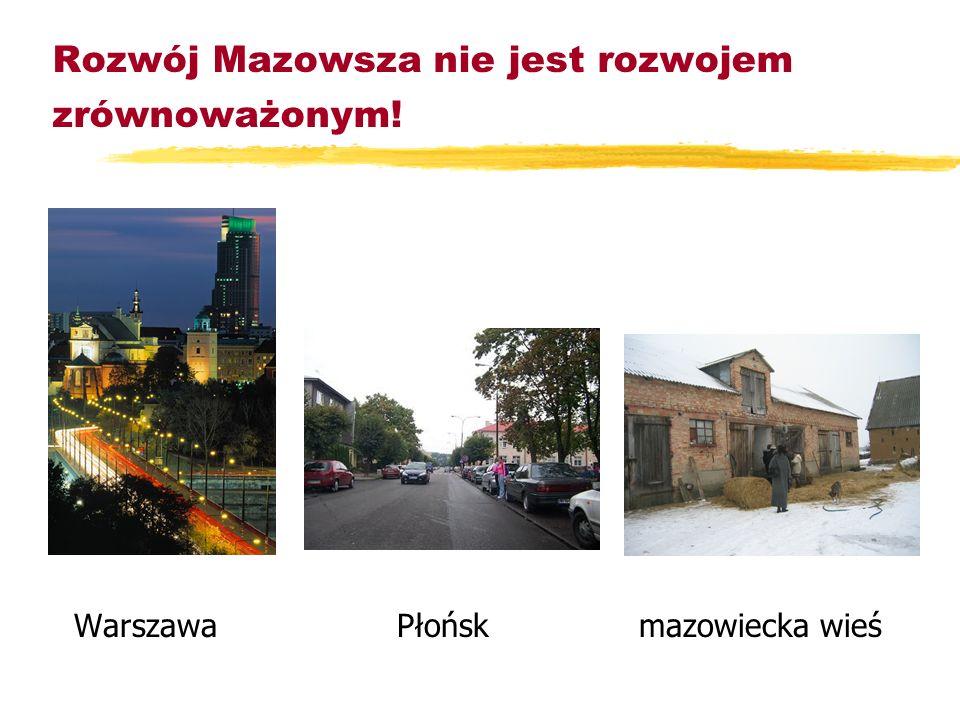 Uczestniczyliśmy w tworzeniu strategii: zKozienic zPłońska