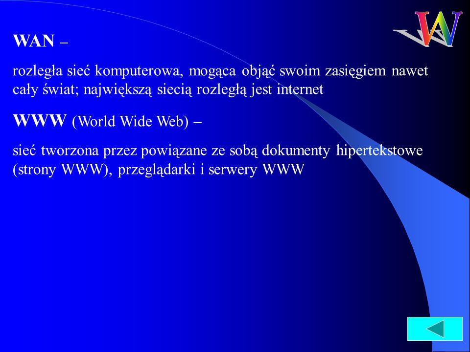 WAN – rozległa sieć komputerowa, mogąca objąć swoim zasięgiem nawet cały świat; największą siecią rozległą jest internet WWW (World Wide Web) – sieć t