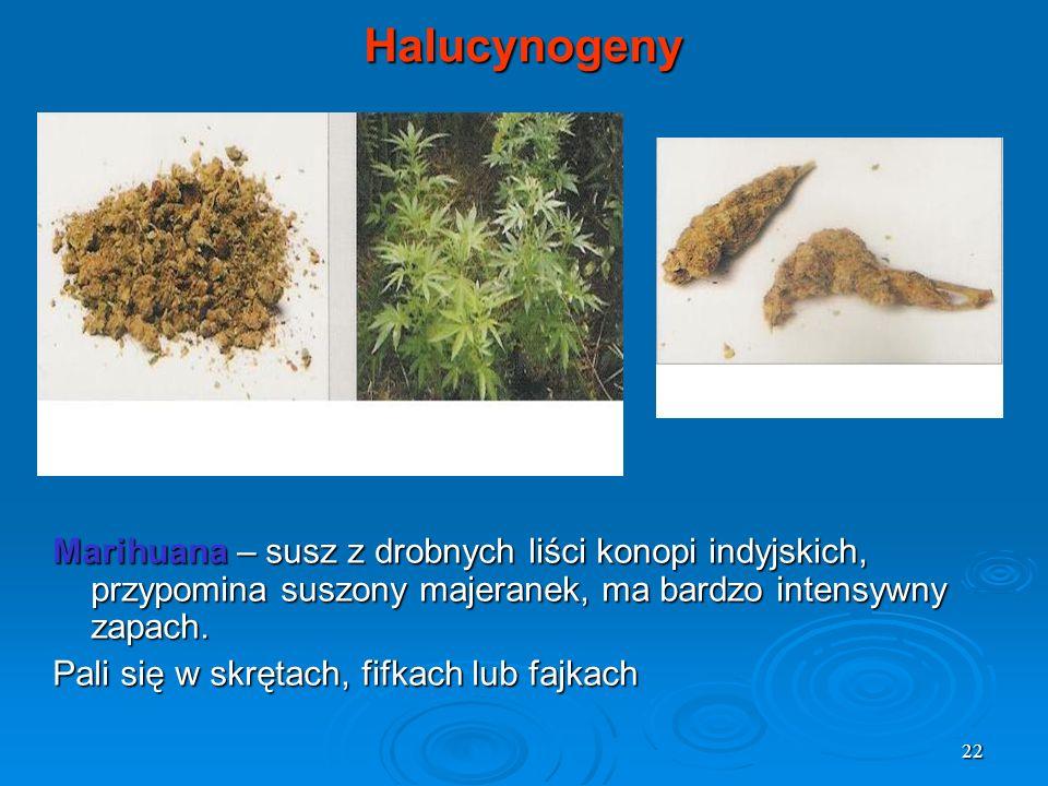 22 Halucynogeny Marihuana – susz z drobnych liści konopi indyjskich, przypomina suszony majeranek, ma bardzo intensywny zapach. Pali się w skrętach, f