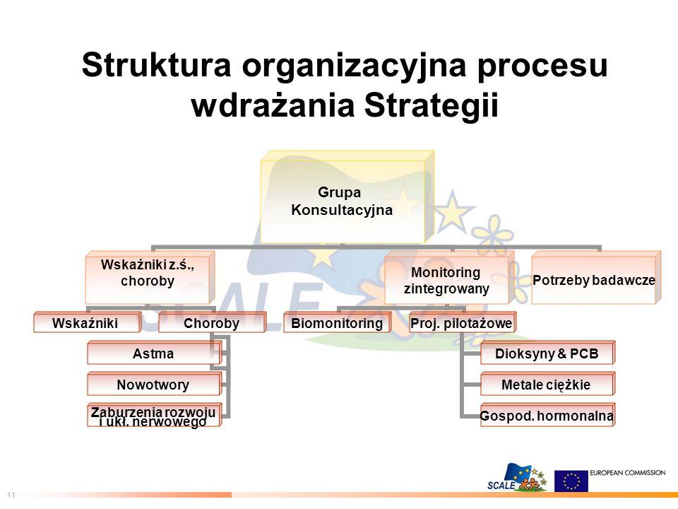 11 Struktura organizacyjna procesu wdrażania Strategii Grupa Konsultacyjna Wskaźniki z.ś., choroby WskaźnikiChoroby Astma Nowotwory Zaburzenia rozwoju i ukł.