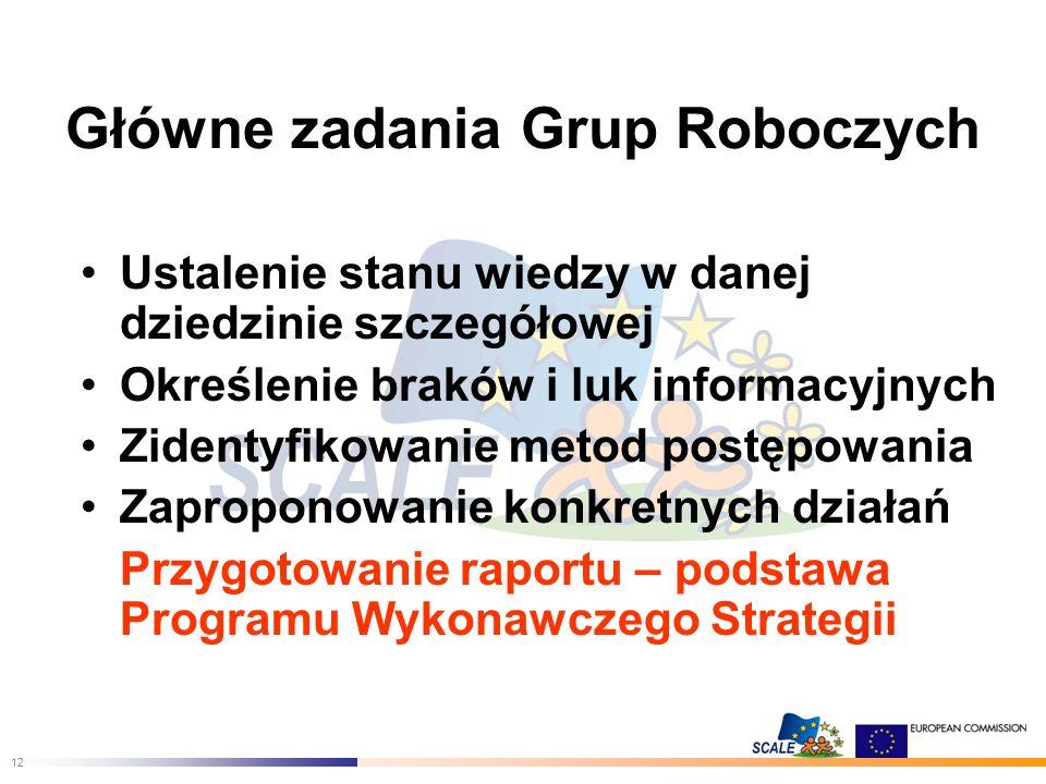 12 Główne zadania Grup Roboczych Ustalenie stanu wiedzy w danej dziedzinie szczegółowej Określenie braków i luk informacyjnych Zidentyfikowanie metod postępowania Zaproponowanie konkretnych działań Przygotowanie raportu – podstawa Programu Wykonawczego Strategii