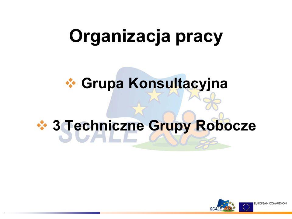 7 Organizacja pracy Grupa Konsultacyjna 3 Techniczne Grupy Robocze