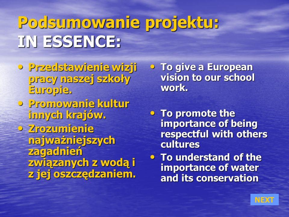 Podsumowanie projektu: IN ESSENCE: Przedstawienie wizji pracy naszej szkoły Europie.