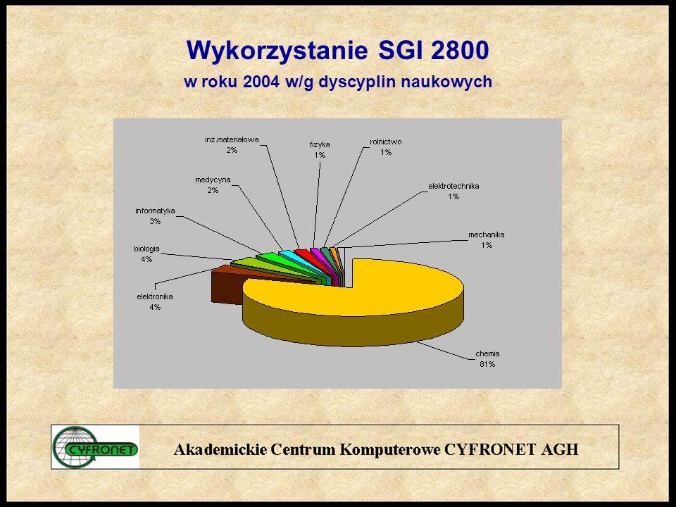 Wykorzystanie SGI 2800 w roku 2004 w/g dyscyplin naukowych