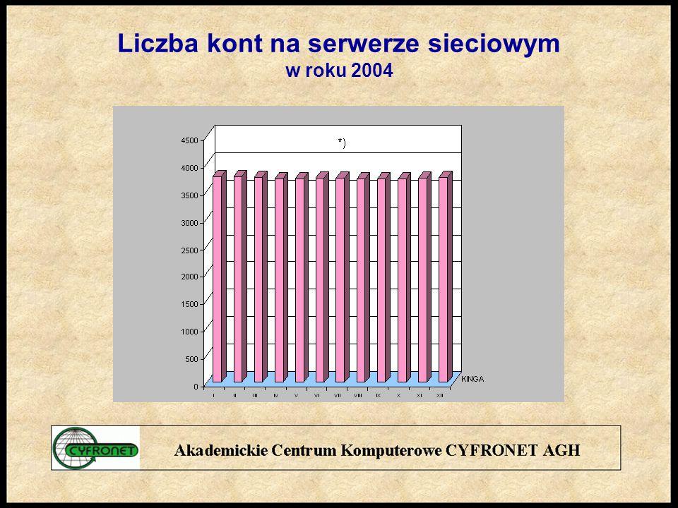 Liczba kont na serwerze sieciowym w roku 2004