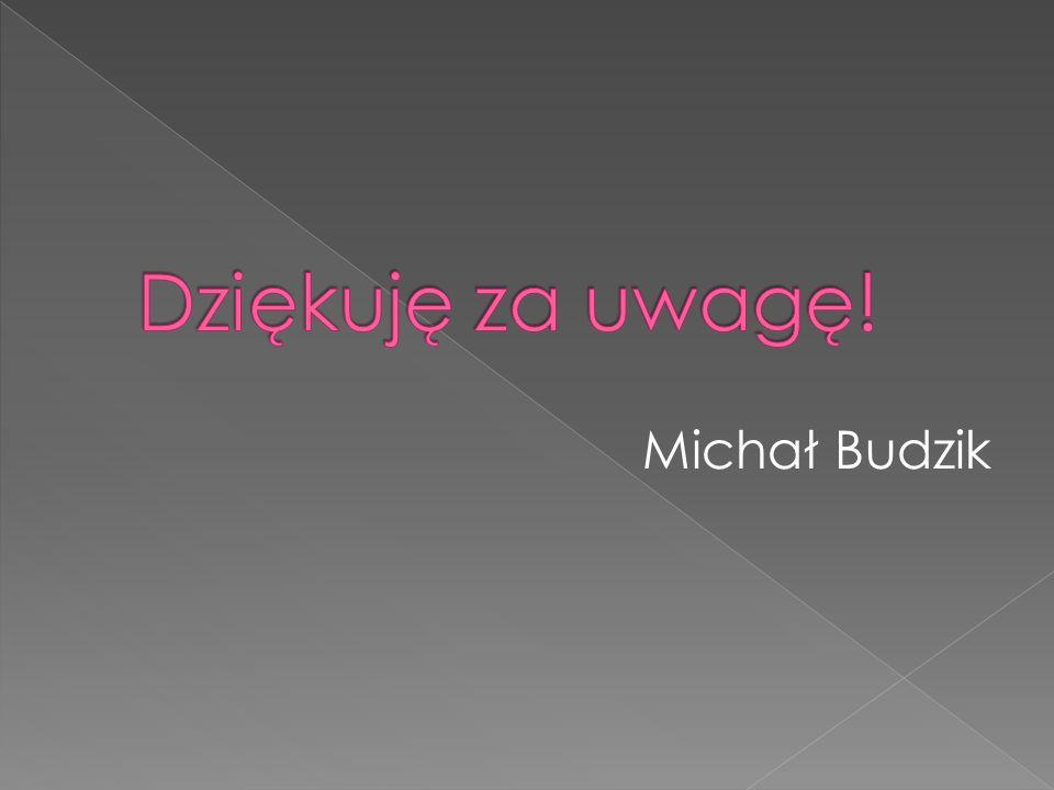 Michał Budzik