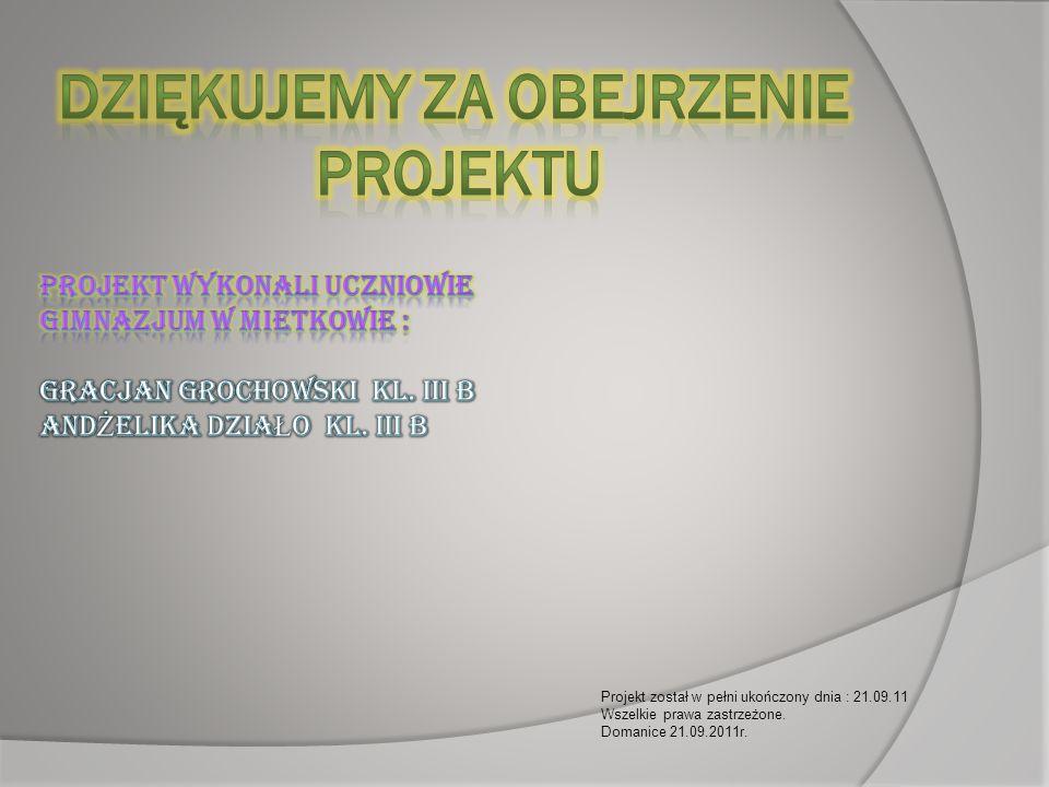 Projekt został w pełni ukończony dnia : 21.09.11 Wszelkie prawa zastrzeżone. Domanice 21.09.2011r.