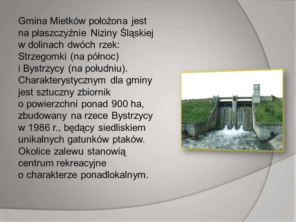 Gmina Mietków położona jest na płaszczyźnie Niziny Śląskiej w dolinach dwóch rzek: Strzegomki (na północ) i Bystrzycy (na południu). Charakterystyczny