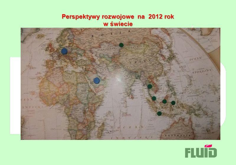 Perspektywy rozwojowe na 2012 rok w świecie