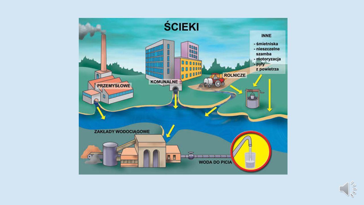 Ze względu na źródło: *źródła punktowe – ścieki odprowadzane w zorganizowany sposób systemami kanalizacyjnymi, pochodzące głównie z zakładów przemysłowych i z aglomeracji miejskich, *zanieczyszczenia powierzchniowe lub obszarowe – zanieczyszczenia spłukiwane opadami atmosferycznymi z terenów zurbanizowanych nie posiadających systemów kanalizacyjnych oraz z obszarów rolnych i leśnych, *zanieczyszczenia ze źródeł liniowych lub pasmowych – zanieczyszczenia pochodzenia komunikacyjnego, wytwarzane przez środki transportu i spłukiwane z powierzchni dróg lub torfowisk oraz pochodzące z rurociągów, gazociągów, kanałów ściekowych, osadowych.