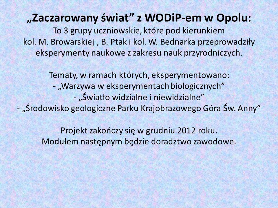Zaczarowany świat z WODiP-em w Opolu: To 3 grupy uczniowskie, które pod kierunkiem kol. M. Browarskiej, B. Ptak i kol. W. Bednarka przeprowadziły eksp