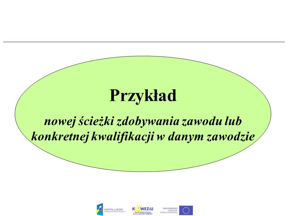 Przykład nowej ścieżki zdobywania zawodu lub konkretnej kwalifikacji w danym zawodzie