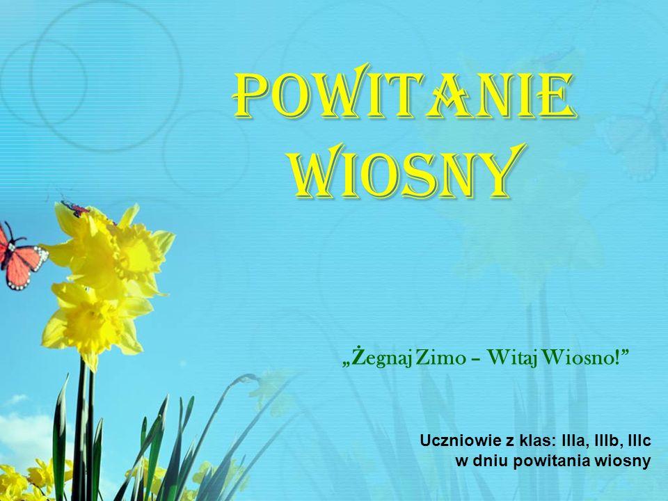 Powitanie Wiosny Ż egnaj Zimo – Witaj Wiosno! Uczniowie z klas: IIIa, IIIb, IIIc w dniu powitania wiosny