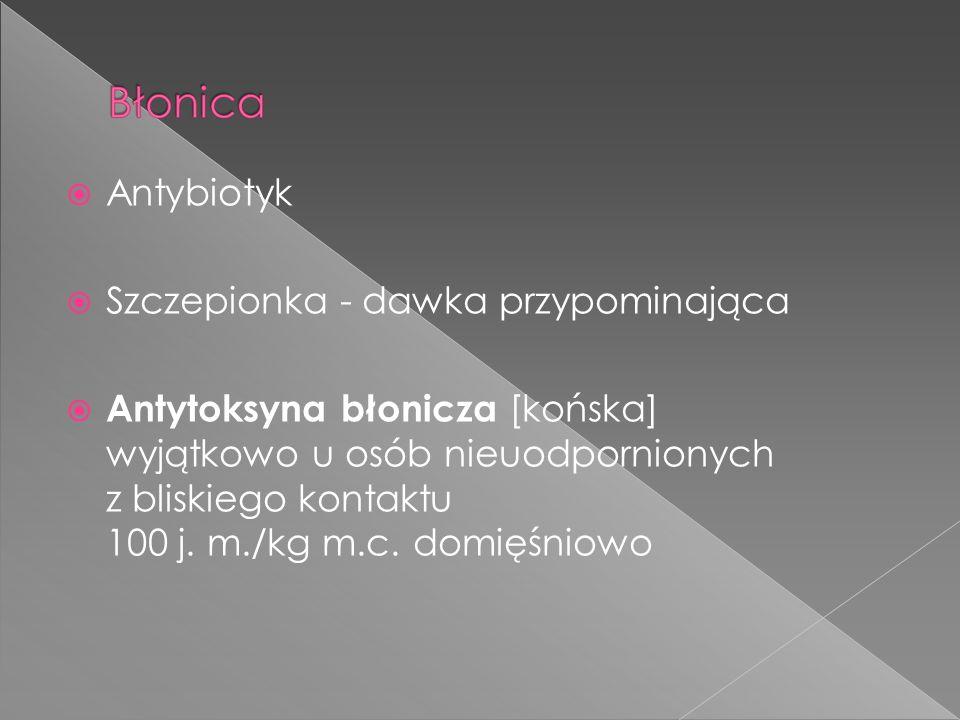 Antybiotyk Szczepionka - dawka przypominająca Antytoksyna błonicza [końska] wyjątkowo u osób nieuodpornionych z bliskiego kontaktu 100 j. m./kg m.c. d