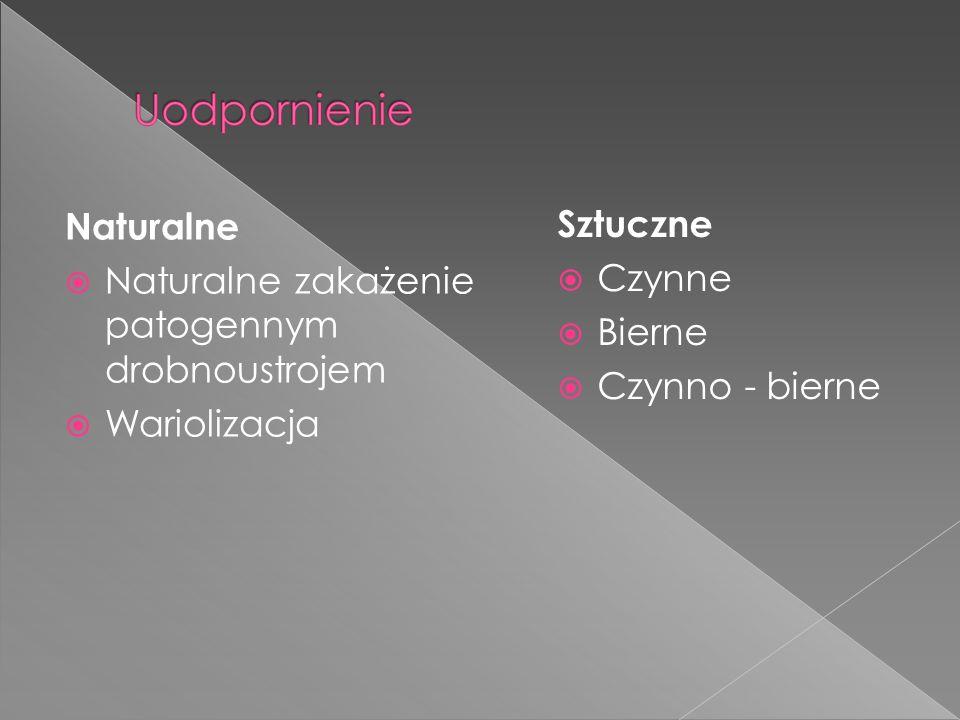 Naturalne Naturalne zakażenie patogennym drobnoustrojem Wariolizacja Sztuczne Czynne Bierne Czynno - bierne
