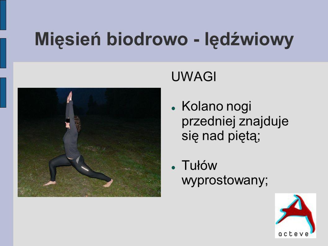 Mięsień biodrowo - lędźwiowy UWAGI Kolano nogi przedniej znajduje się nad piętą; Tułów wyprostowany;