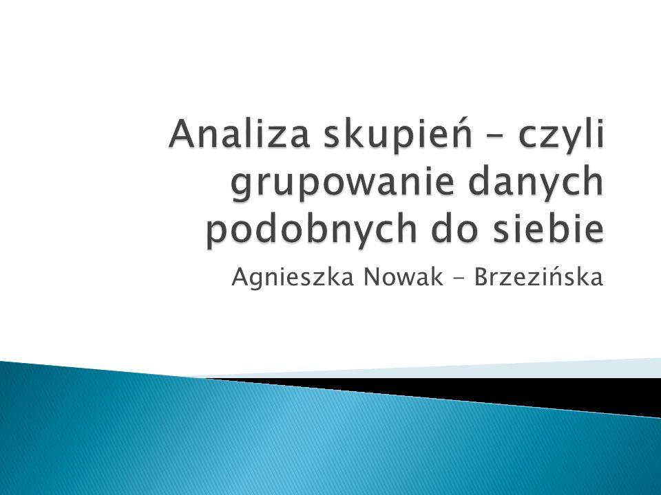 Agnieszka Nowak - Brzezińska