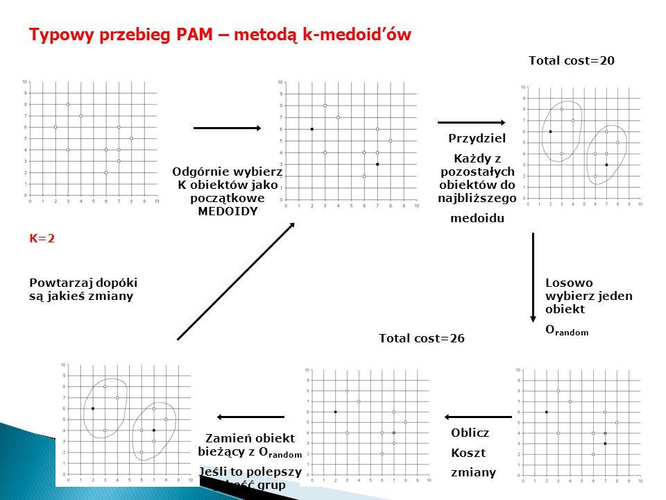 Typowy przebieg PAM – metodą k-medoidów K=2 Powtarzaj dopóki są jakieś zmiany Oblicz Koszt zmiany Losowo wybierz jeden obiekt O random Odgórnie wybier