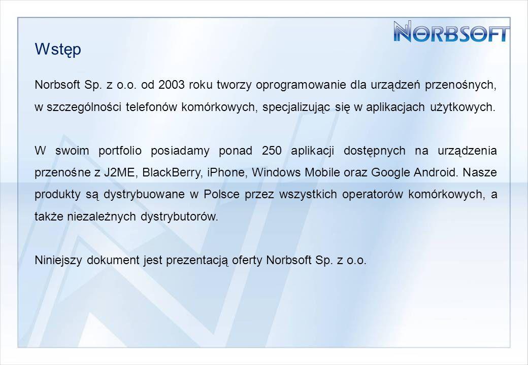 Zakres oferowanych usług Norbsoft Sp.z o.o.