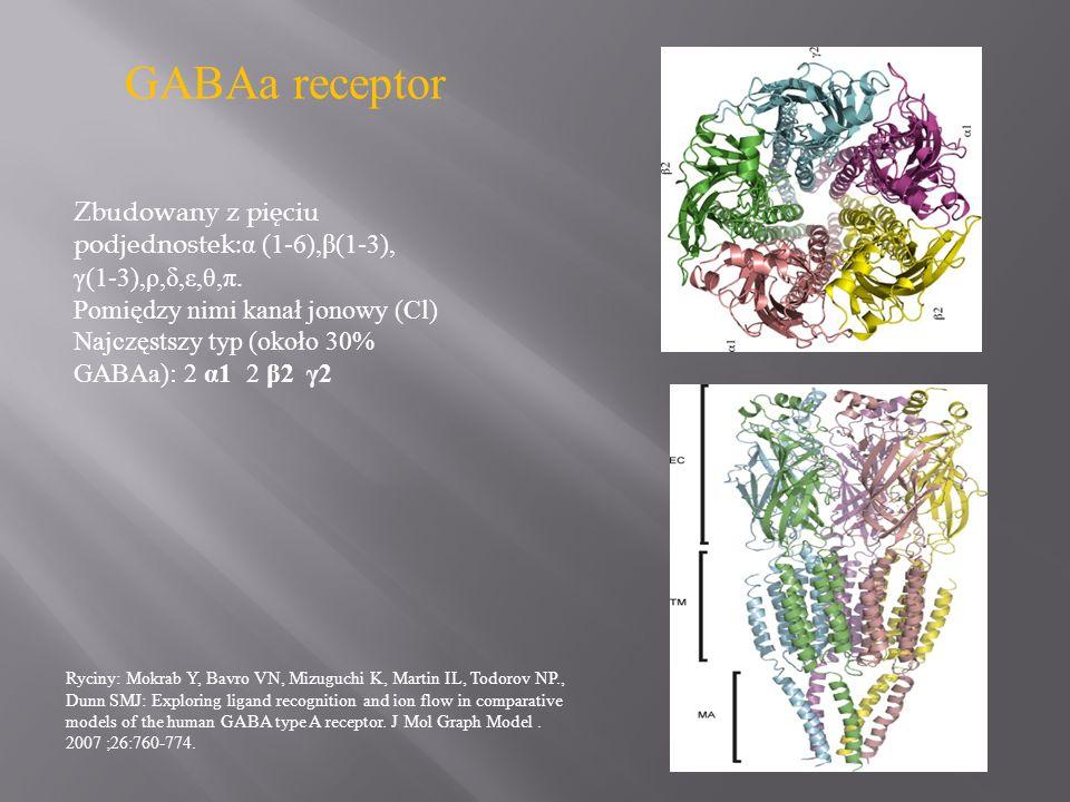 GABAa receptor Ryciny: Mokrab Y, Bavro VN, Mizuguchi K, Martin IL, Todorov NP., Dunn SMJ: Exploring ligand recognition and ion flow in comparative mod