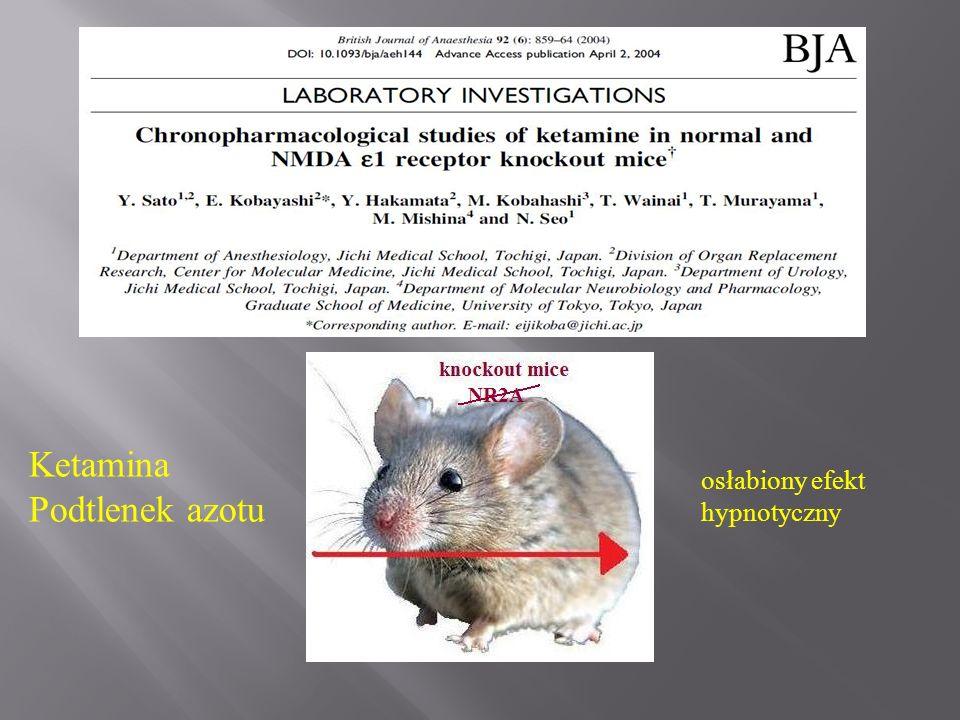 Ketamina Podtlenek azotu osłabiony efekt hypnotyczny