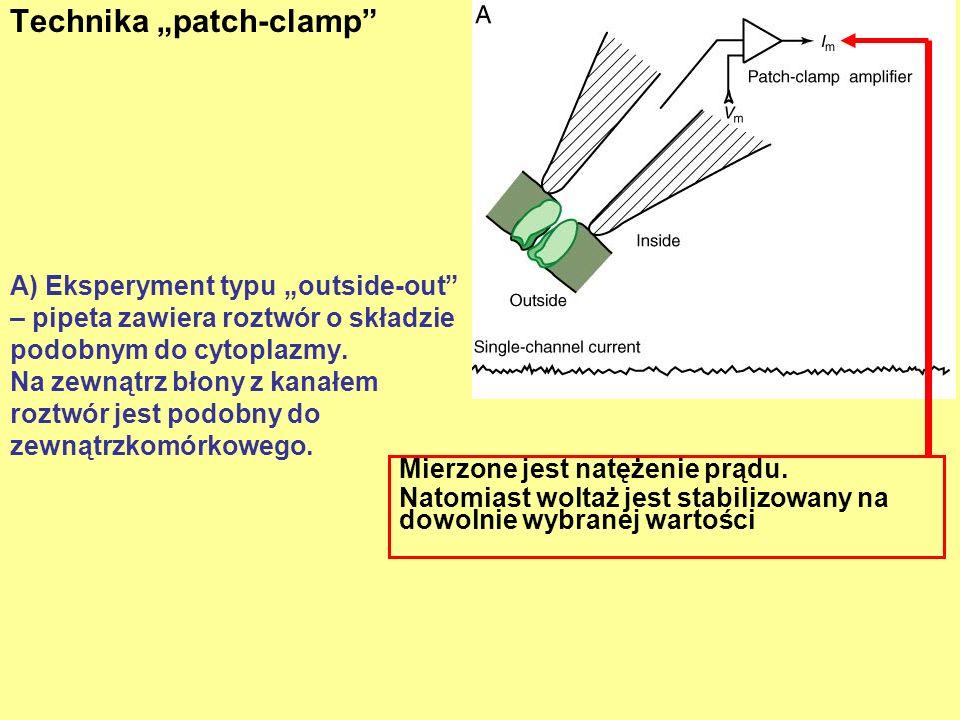 A) Eksperyment typu outside-out – pipeta zawiera roztwór o składzie podobnym do cytoplazmy.