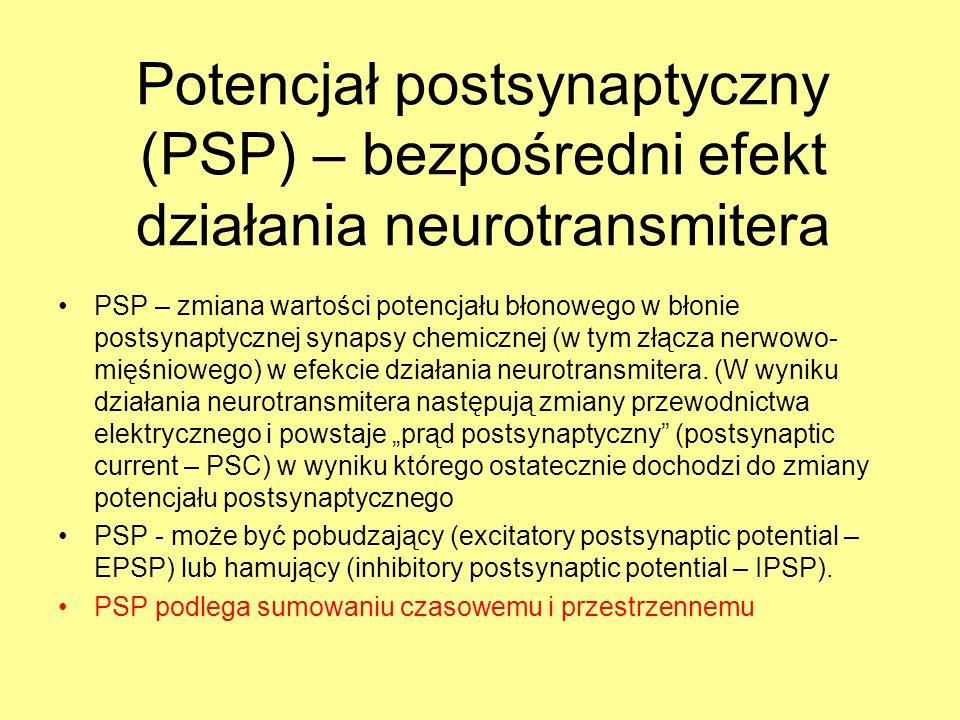 Potencjał postsynaptyczny (PSP) – bezpośredni efekt działania neurotransmitera PSP – zmiana wartości potencjału błonowego w błonie postsynaptycznej synapsy chemicznej (w tym złącza nerwowo- mięśniowego) w efekcie działania neurotransmitera.