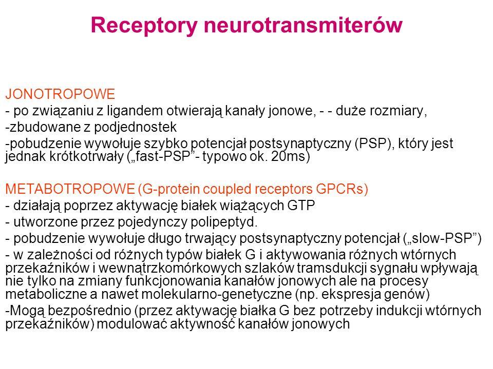 Receptory neurotransmiterów JONOTROPOWE - po związaniu z ligandem otwierają kanały jonowe, - - duże rozmiary, -zbudowane z podjednostek -pobudzenie wywołuje szybko potencjał postsynaptyczny (PSP), który jest jednak krótkotrwały (fast-PSP- typowo ok.