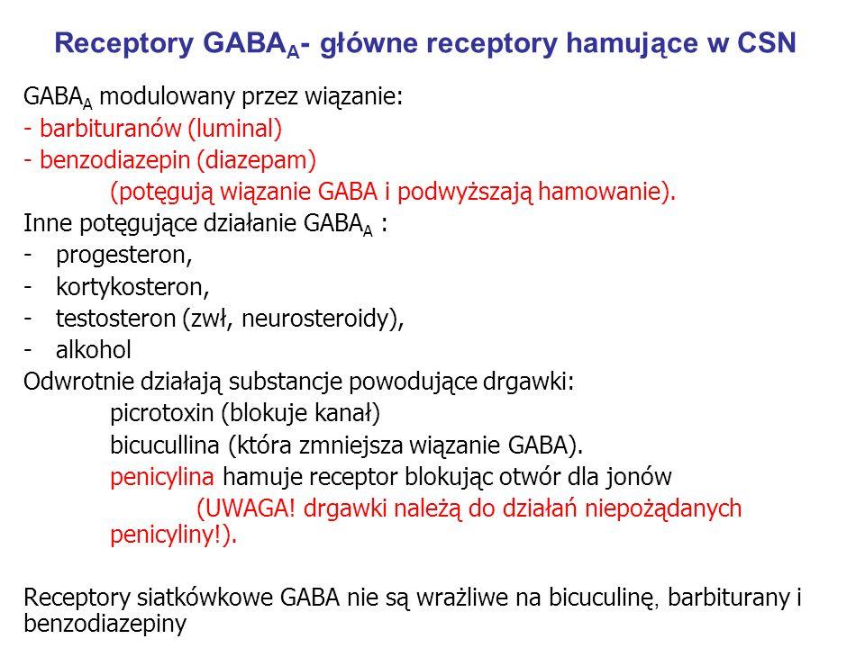 Receptory GABA A - główne receptory hamujące w CSN GABA A modulowany przez wiązanie: - barbituranów (luminal) - benzodiazepin (diazepam) (potęgują wiązanie GABA i podwyższają hamowanie).