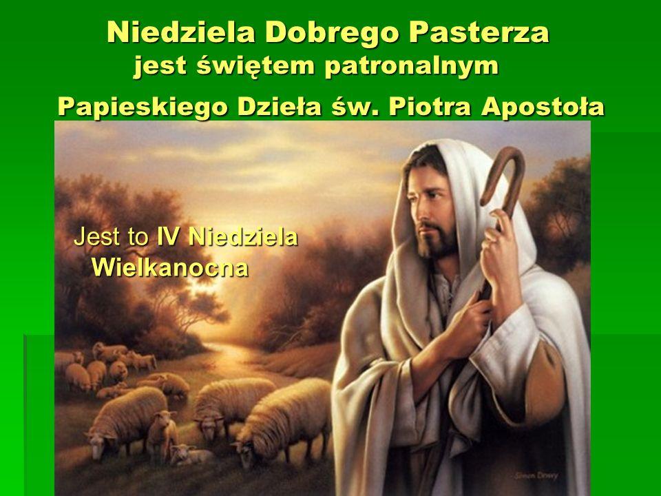 Niedziela Dobrego Pasterza jest świętem patronalnym Papieskiego Dzieła św. Piotra Apostoła Niedziela Dobrego Pasterza jest świętem patronalnym Papiesk