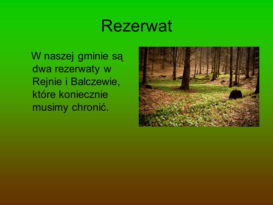Wykonawcy Sebastian Kamiński Wiktor Środoń Mateusz Kostuch Szymon Szczęsny Mikołaj Mielcarek
