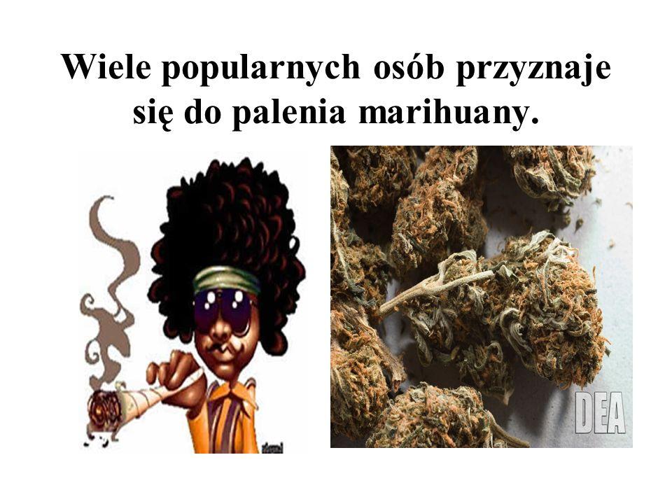 Marihuana – najbardziej popularna Uważa się, że 50% młodzieży na całym świecie choć raz paliło marihuanę!