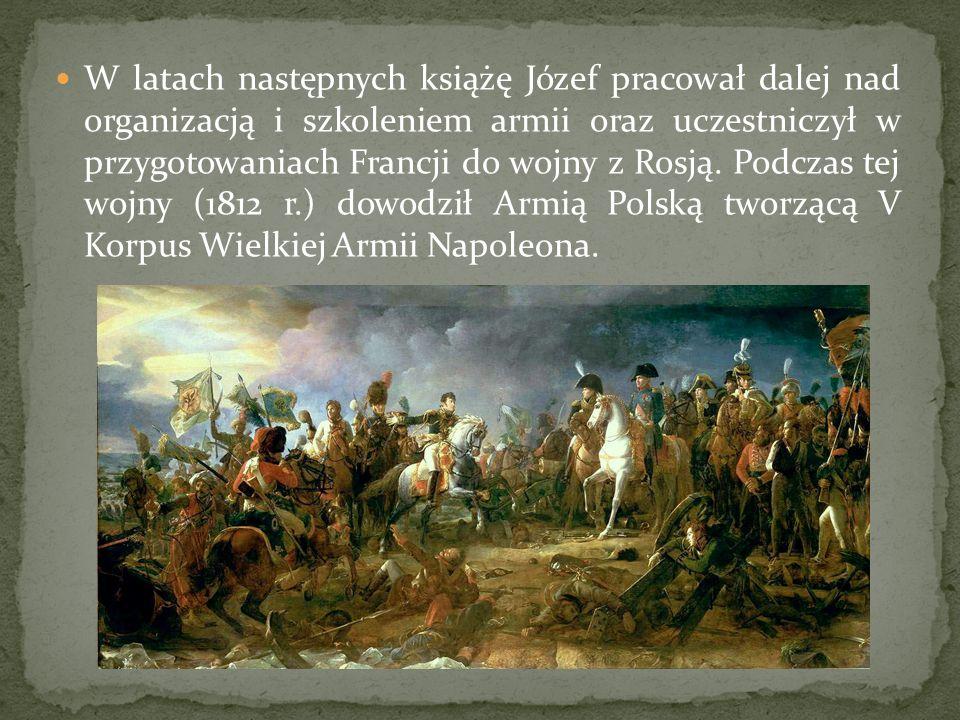 W latach następnych książę Józef pracował dalej nad organizacją i szkoleniem armii oraz uczestniczył w przygotowaniach Francji do wojny z Rosją. Podcz