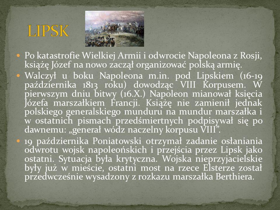 Po katastrofie Wielkiej Armii i odwrocie Napoleona z Rosji, książę Józef na nowo zaczął organizować polską armię. Walczył u boku Napoleona m.in. pod L