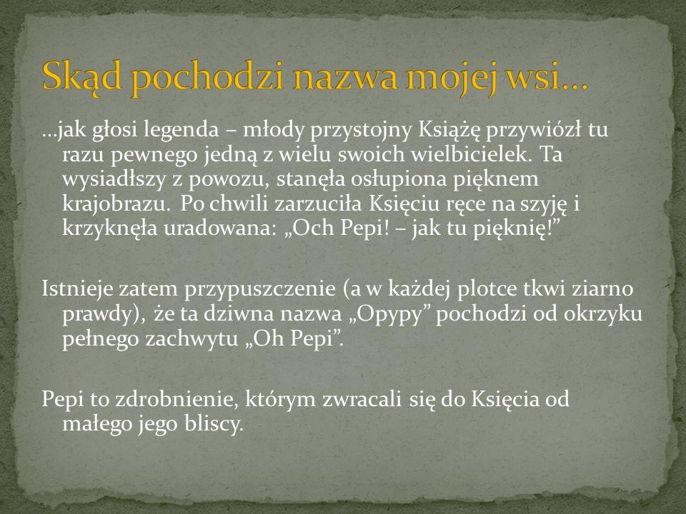 - Jest wpisana do rejestru zabytków województwa mazowieckiego jako: - zespół pałacowo-parkowy Wiśnin: pałac pocz.