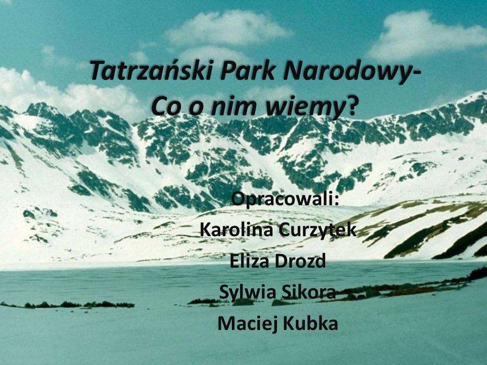 Tatrzański Park Narodowy- Co o nim wiemy? Opracowali: Karolina Curzytek Eliza Drozd Sylwia Sikora Maciej Kubka