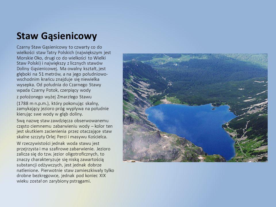 Staw Gąsienicowy Czarny Staw Gąsienicowy to czwarty co do wielkości staw Tatry Polskich (największym jest Morskie Oko, drugi co do wielkości to Wielki